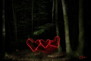 forest_heart