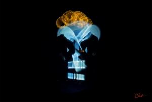 Metamorphic Cha Skulls 2016_blueback