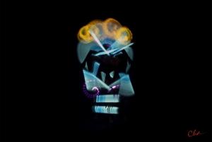 Metamorphic Cha Skulls 2016_blueside