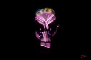 Metamorphic Cha Skulls 2016_pink