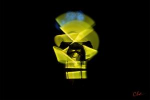 Metamorphic Cha Skulls 2016_yellow